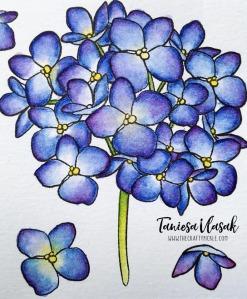 Taniesa Vlasak | TheCraftyPickle.com